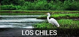 LosChiles