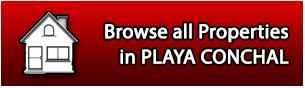 Properties for Sale in Playa Conchal