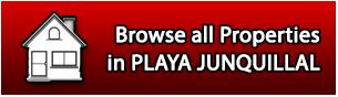 Properties for Sale in Playa Junquillal