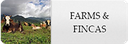 farms and fincas