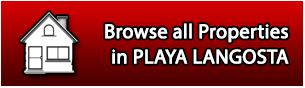 PLAYA LANGOSTA browse all properties