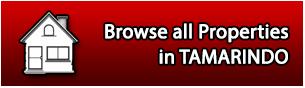 Tamarindo Properties For Sale