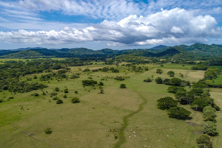 equestrian estate for sale in costa rica.jpg