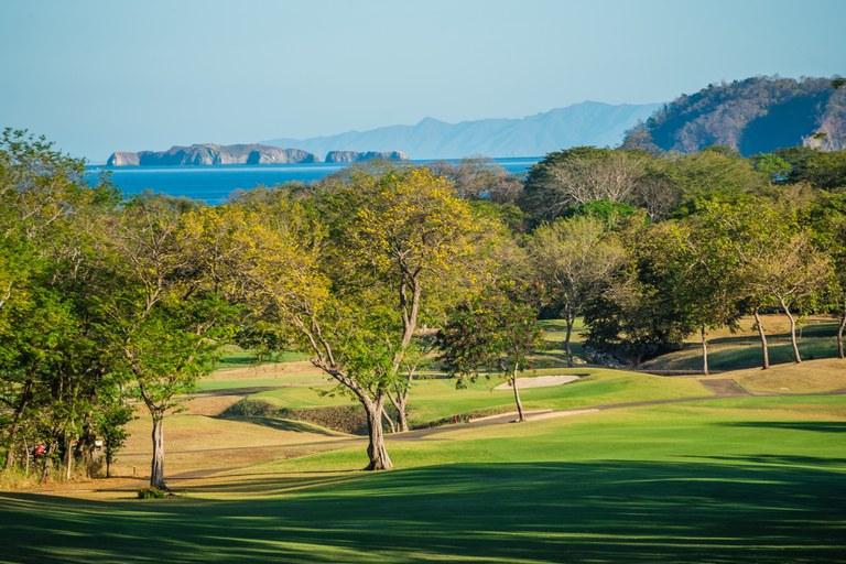 Golf_5.jpg