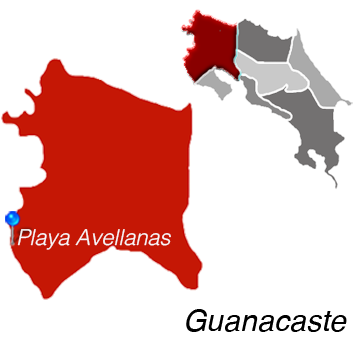 Map of Playa Avellanas