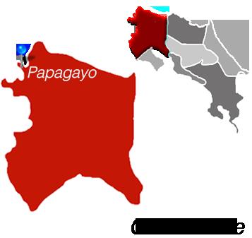 Papagayo Town Map