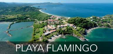 Playa-Flamingo.jpg