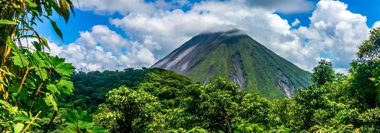 Banner-Mountain-Jungle.jpg