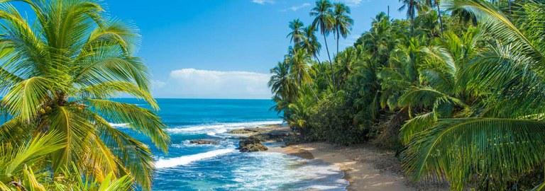 Banner-Caribbean.jpg
