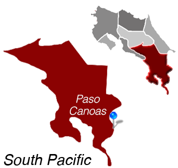 Map of Paso Canoas, Costa Rica