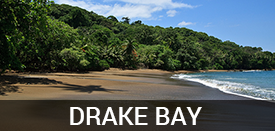Living in Drake Bay