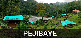 Living in Pejibaye