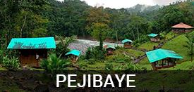 Living In Pejibaye