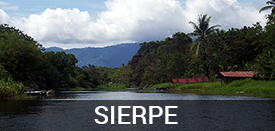 Living in Sierpe