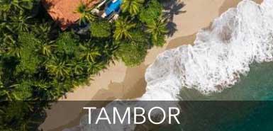 Tambor.jpg